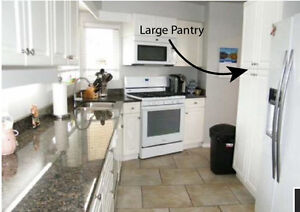 Double Pantry / Kitchen Cupboard with Spicerack