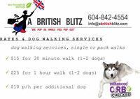 English Walkers -- Dog Walking & Pet Sitting.