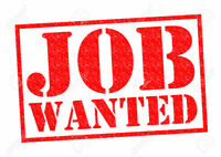 Searching For Odd Jobs