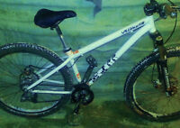 2007 specialized  P.2 CR-MO