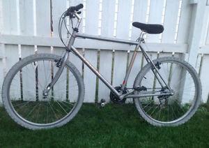 Road - mountain bike