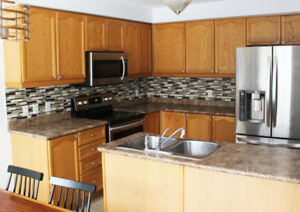 Kitchen Cabinets and Countertop $350 (no sink area)