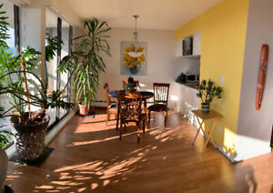 ** One Rm in fantastic 2 Br apartment