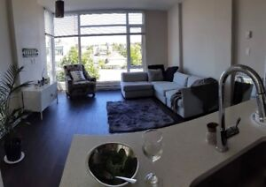 Female Roommate Wanted for Beautiful 2 Bdrm Apartment Downtown