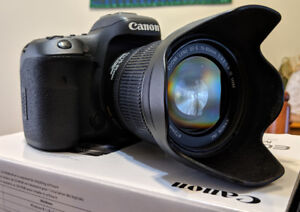Canon 7D Mark II with Lenses