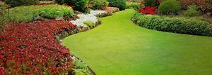 Pro Landscaping & grass cutting. Affordable. GTA
