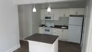 Two Bedroom Apartment - Totally Renovated!