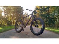 Full Carbon Custom Fat Bike - Large - Beautiful Condition