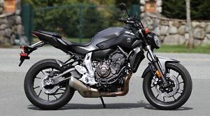 Looking for Yamaha fz07