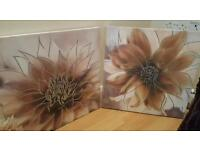 Two Canvases and 4 cushions (Brown/cream colours)