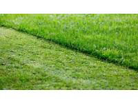 Grass cutting services. Leave your garden in our hands!