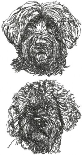 Portuguese Water Dog Breed Personalized SWEATSHIRT EMBROIDERED Beautiful