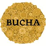 Bucha Kombucha