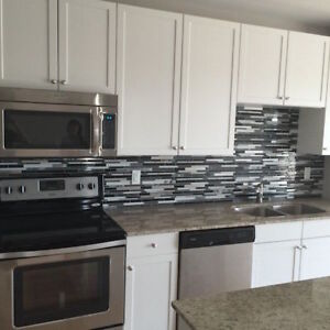 1 bed +1 den in kitchener downtown, available now, 1600 + hydro