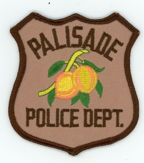 PALISADE COLORADO CO POLICE COLORFUL PATCH STYLE #3 SHERIFF