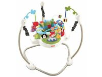 Used Fisher-Price Discover 'n Grow Jumperoo