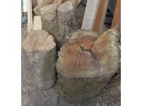 Free fire wood, wood logs, tree stumps