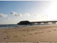 Trip to Bournemouth Beach ?
