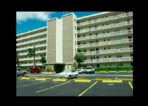 RENOVATED 2 BEDROOM APARTMENT FOR RENT HALLANDALE  FLORIDA