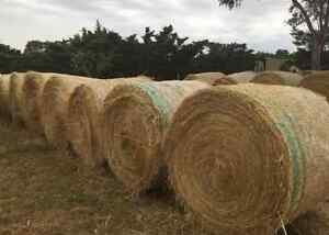 GRASS HAY BALES FOR SALE! Rockbank Melton Area Preview