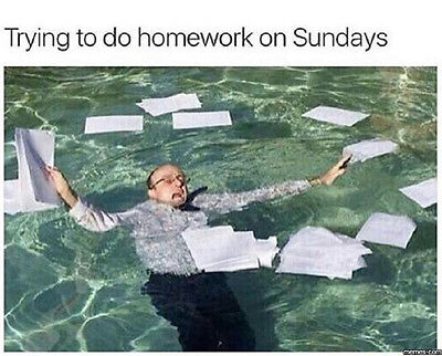 Bei den Hausaufgaben abgesoffen, so schnell kann es gehen!