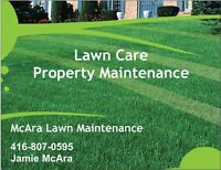 Lawn/Grass Cutting Service