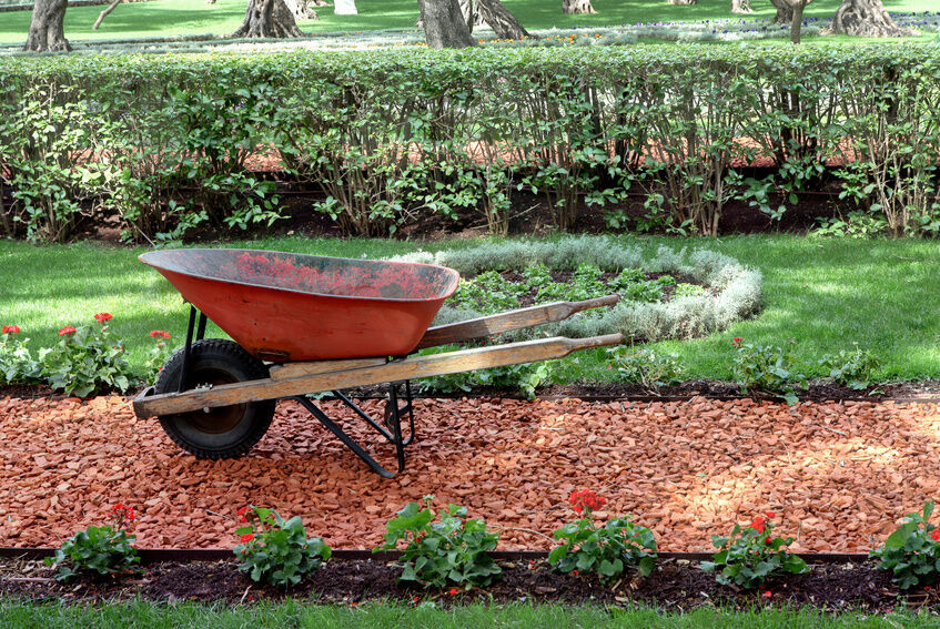 How to Buy Decorative Mulches for the Garden