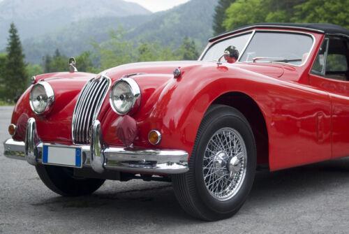 eBay-Ratgeber: Jaguar