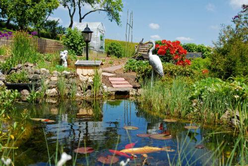 Hilfreiche Tipps zur Gestaltung eines natürlichen Bachlaufs im Garten