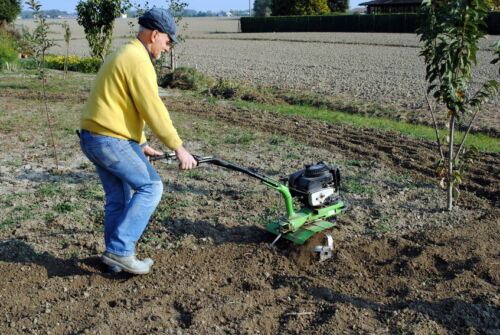 Your Guide on Whether to Buy a Tiller or a Rotovator