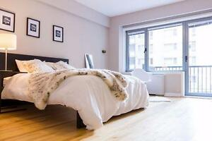 Beautiful Modern Bright FURNISHED Downtown 2 Bedroom apartment