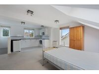 Amazing spacious studio flat in South Norwood.