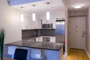 furnished downtown 2 bedroom with washer/dryer - 4 1/2