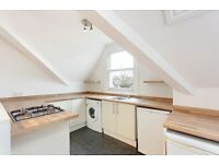 Stunning large 2 bed flat in Tulse Hill. Furnished.