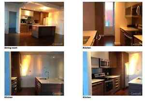 Great Condo for rent near Old Montreal