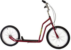 Toucan 20 inch Bike Scooter  for adult / dog