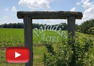 VIDEO: Paradise Acres, 25 Acres of Outdoor Fun & New Cabin