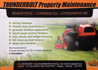 Professional spring cleanup, aeration and lawn maintenance