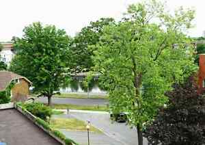 Executive condo with canal view in Golden Triangle