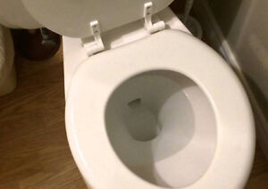 Wanted: old front trap American Standard toilet Kitchener / Waterloo Kitchener Area image 1