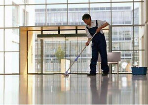MASTER FRANCHISE FOR SALE IN THE CLEANING INDUSTRY