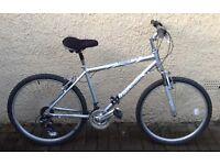 "Bike/Bicycle. GENTS RALEIGH "" TUNDRA "" MOUNTAIN BIKE"