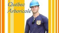Émondage Québec émondeur élagage Charlesbourg élagueur Beauport