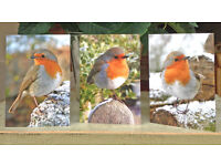 A6 Christmas cards (pack of 5)