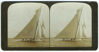 Photo stereoview course voilier yacht - the reliance america's cup defender 1903