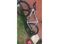 Cheap push bike