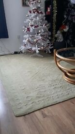 Large Pale Green Rug