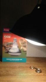 100w D3 Basking Lamp with Light Dome