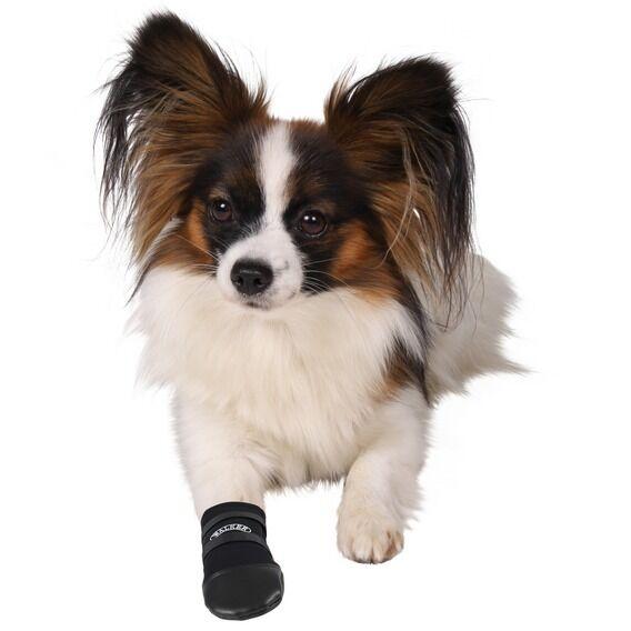Trixie Walker Pflege Schutz Hundeschuhe 1-2-4 Packung Strapazierfähig Schuh