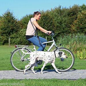 NEW Dog Lead Bike Cycling Jogging Dogs Leash Adjustable